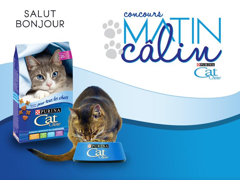 Concours TVA et Purina Cat Chow | À gagner : 1 000 $ et une année de nourriture pour votre chat
