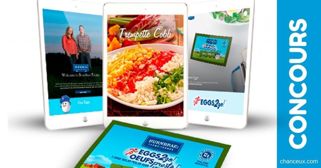 CONCOURS - Gagnez une tablette iPad Mini de 549$