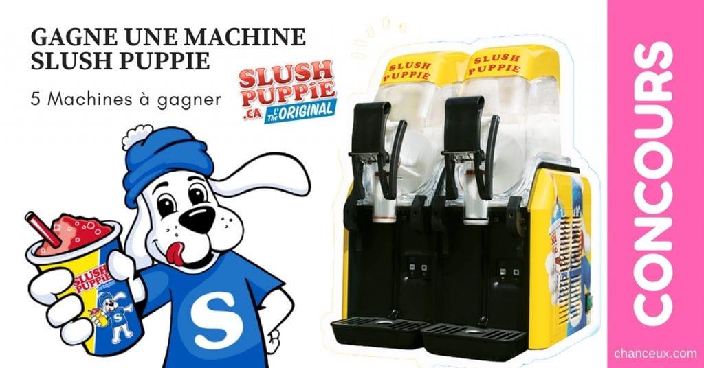 GAGNE 5 MACHINES SLUSH PUPPIE