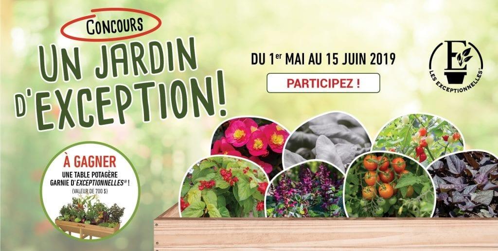 Concours Québec - Une table potagère garnie d'un assortiment de plantes