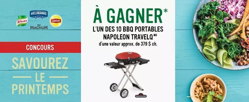 10 Bbq Portables Napoleon Travelq