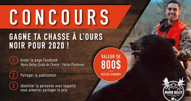 Gagne ta chasse à l'ours noir pour 2020