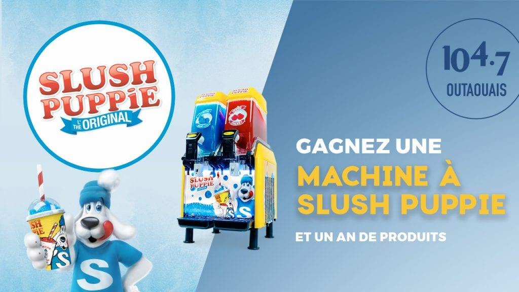 Une Machine À Slush Puppie Et Un An De Produits