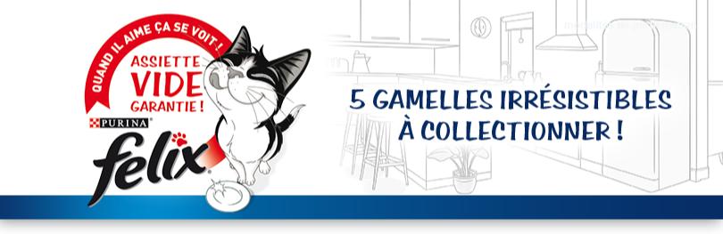 """Gagnez 4000 gamelles pour chat """"Il s'impatiente"""""""