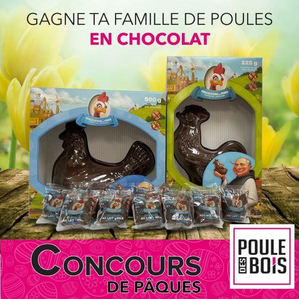 GAGNE TA FAMILLE DE POULES EN CHOCOLAT!