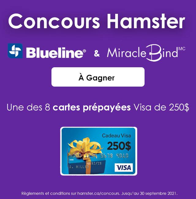 8 CARTES PRÉPAYÉES VISA D'UNE VALEUR DE 250$ CHAQUE